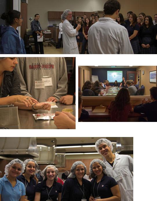 Photos de l'activité L'affaire alimentaire, l'affaire de tous!